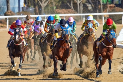 うまい棒 ウマい棒 JRA 日本中央競馬会 日本ダービー 応募方法 期間 いつ 声優